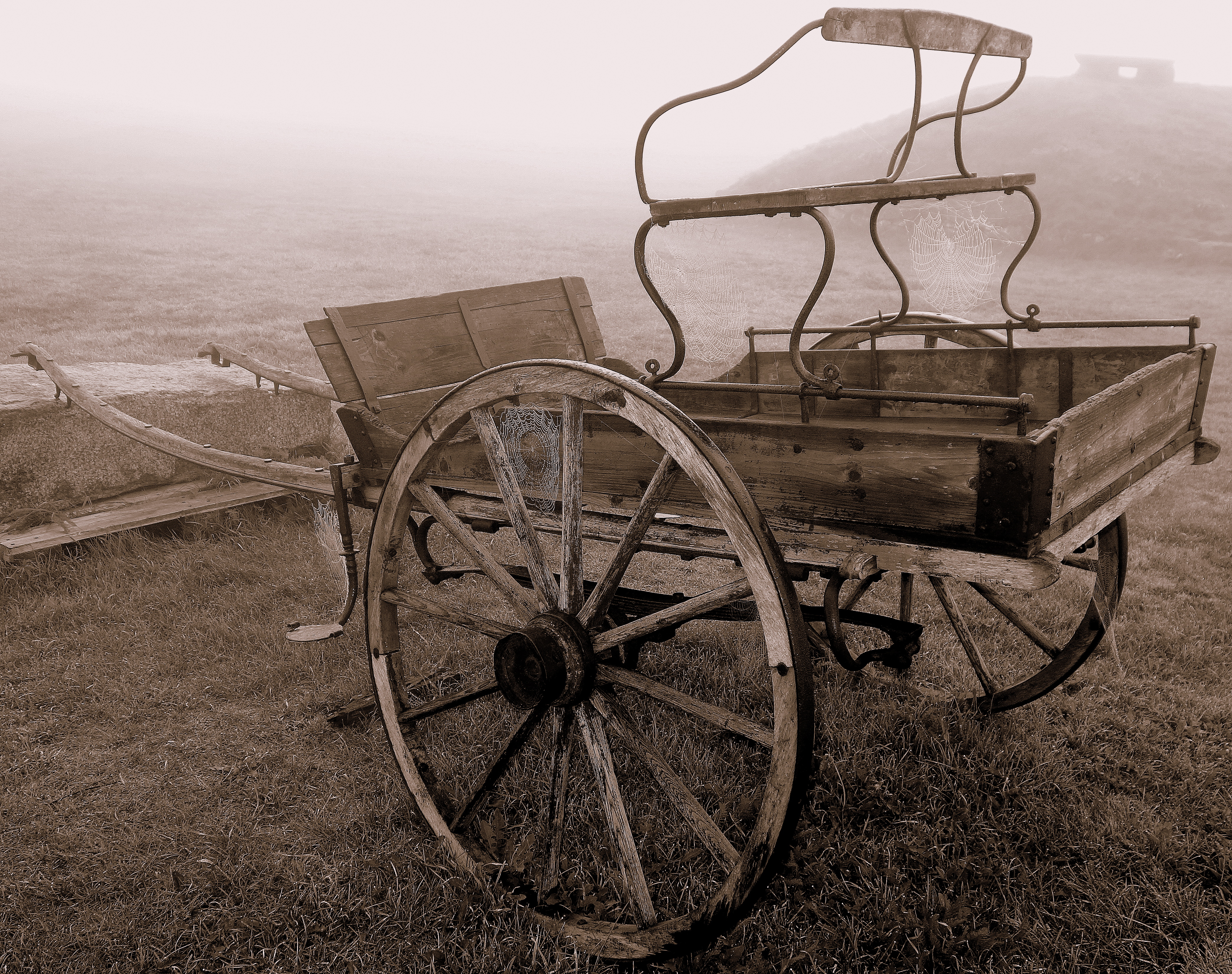 The navy yard was extremely well preserved, and we enjoyed our strolls there. This old cart looked especially attractive with the dew dipped spider webs clinging to its structure and wheels.