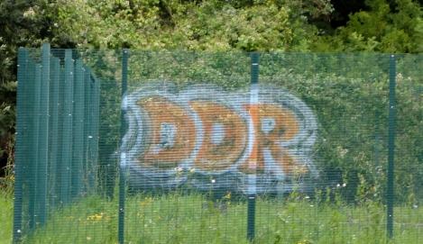 DSC02237.jpg